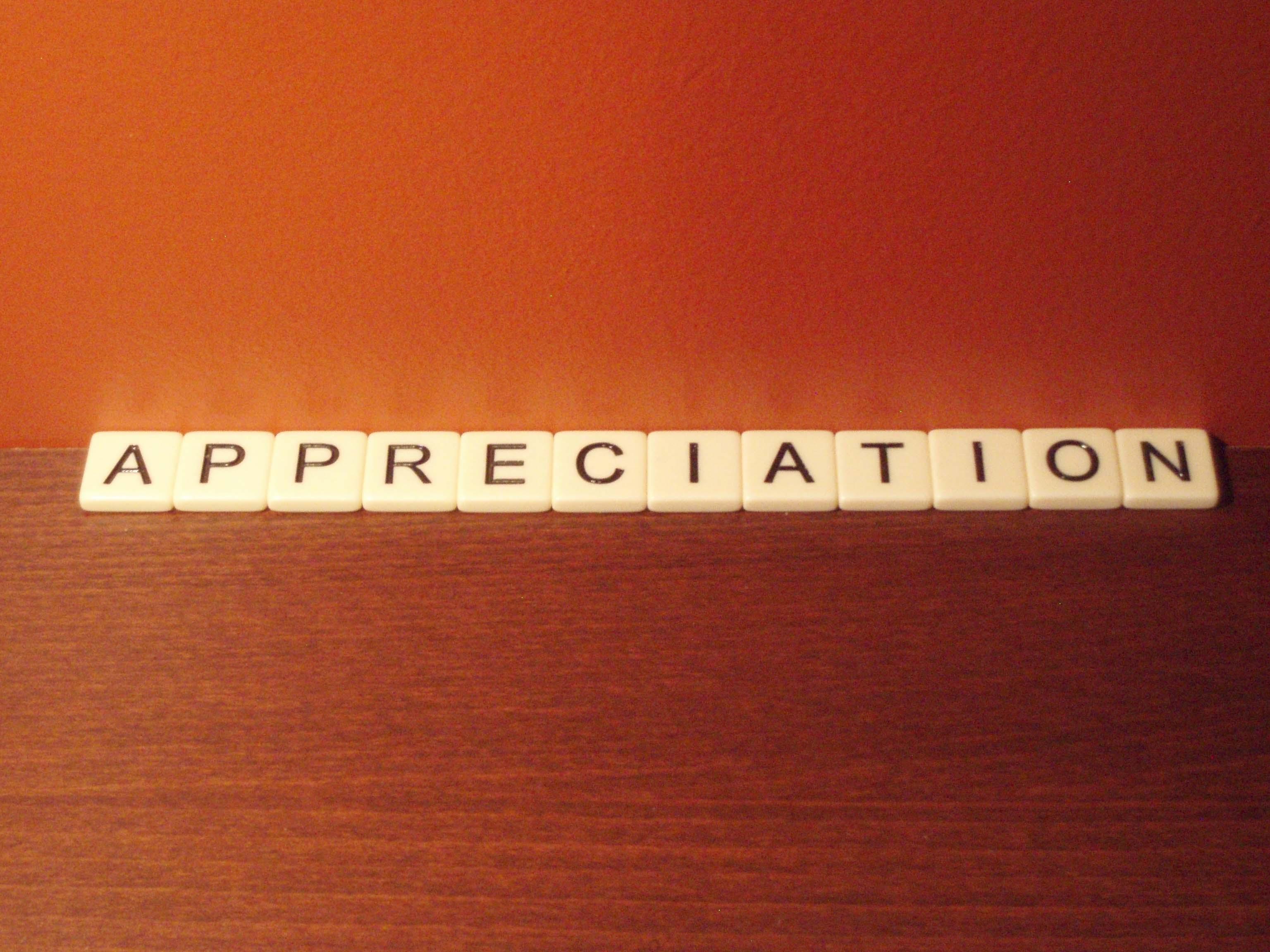 appreciation gimme shelter