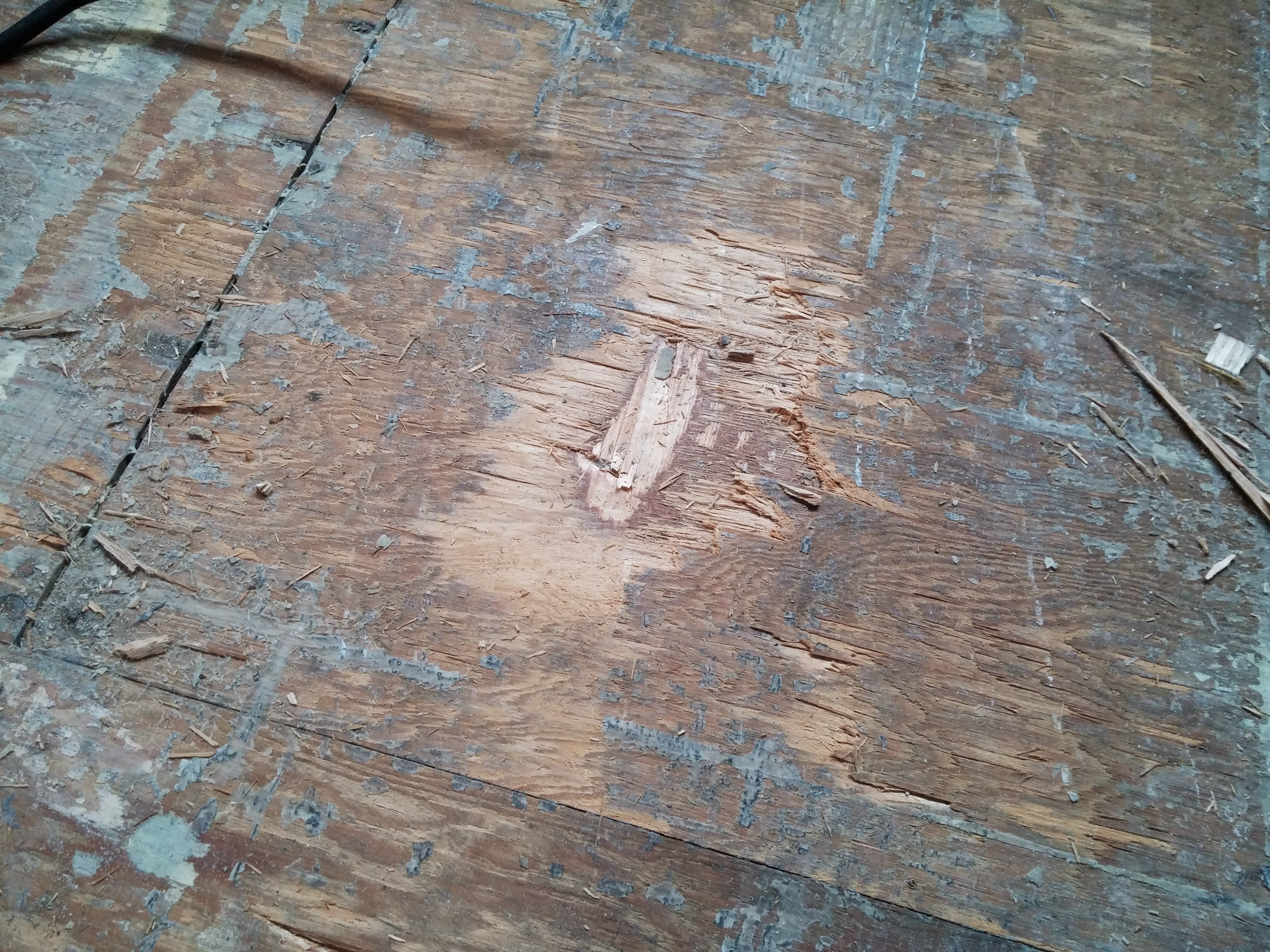 How to remove parquet flooring real estate how to gimme shelter gouge in plywood floor from being too aggressive with the removal dailygadgetfo Images